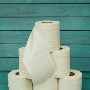 Papel higiénico de bambú, Pandoo