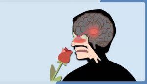 aromaterapia-emociones